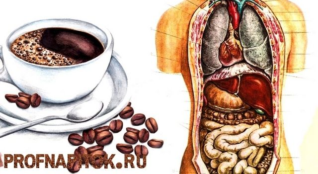 кофе для желудка и кишечника