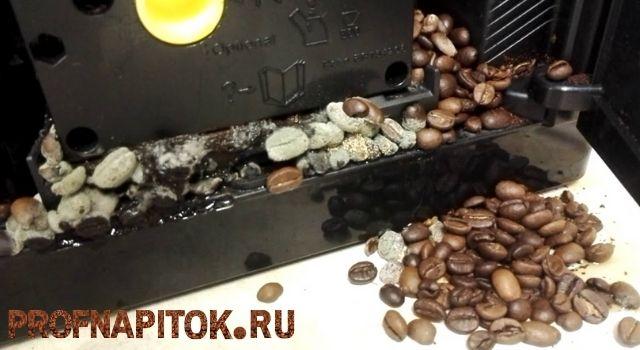 Плесень в кофеварке