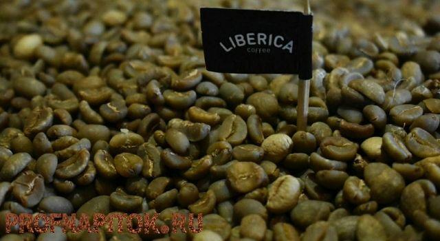 либерика