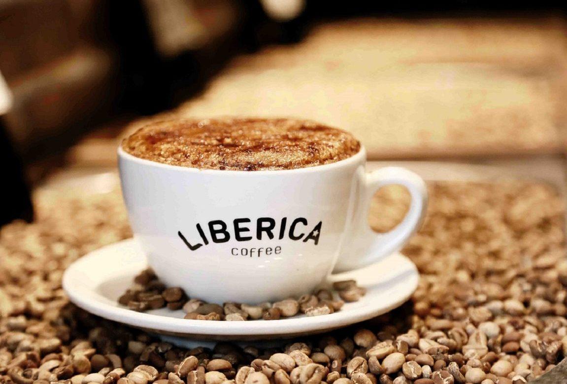 Лучшие премиальные сорта кофе