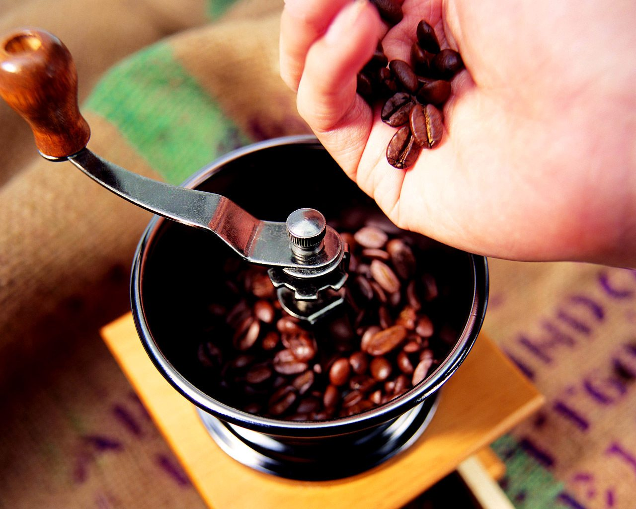 кофемолока